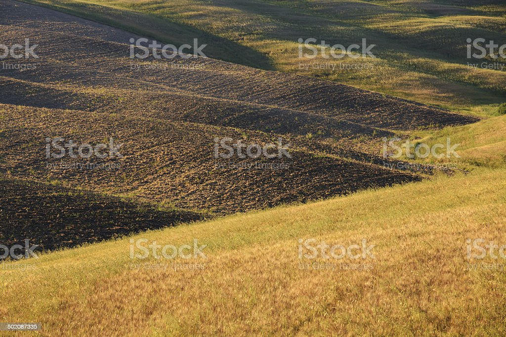 Hills close up in Val D'Orcia, Tuscany. royalty-free stock photo