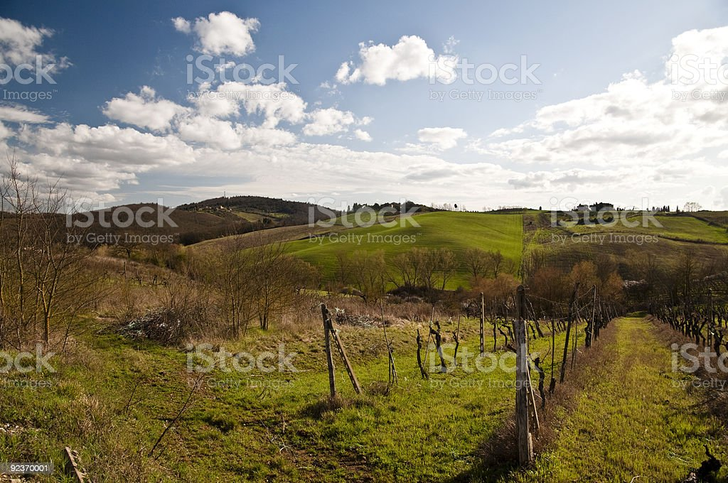 Colline in Chianti royalty-free stock photo