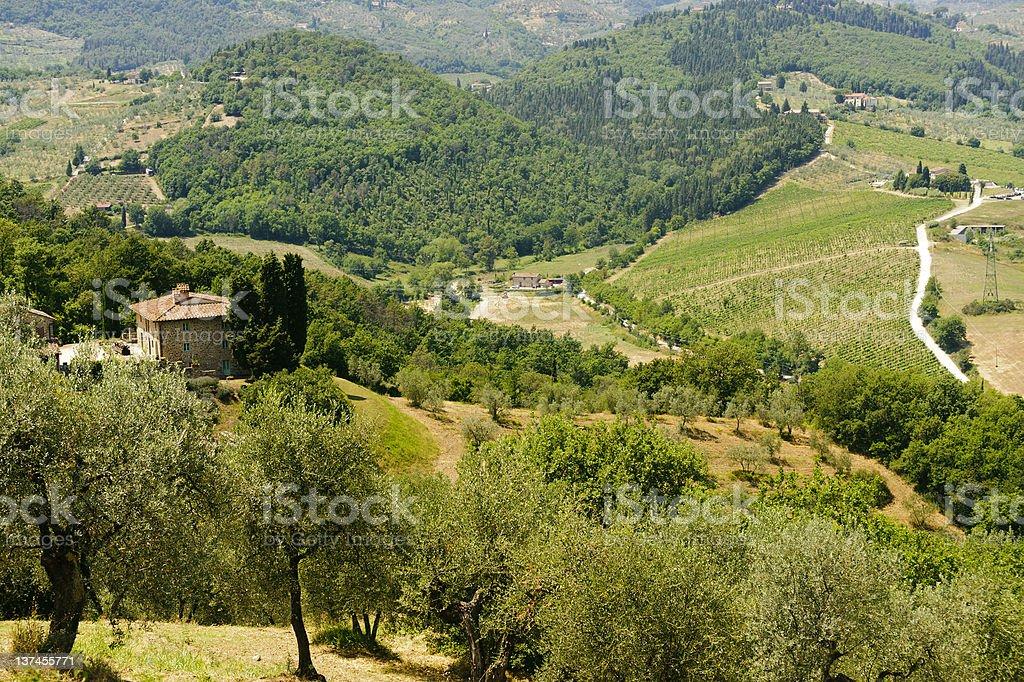 Hills in Tuscany near Artimino royalty-free stock photo