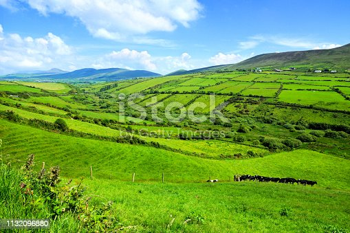 Hills of green rural fields in the countryside of Ireland. Dingle peninsula, County Kerry.