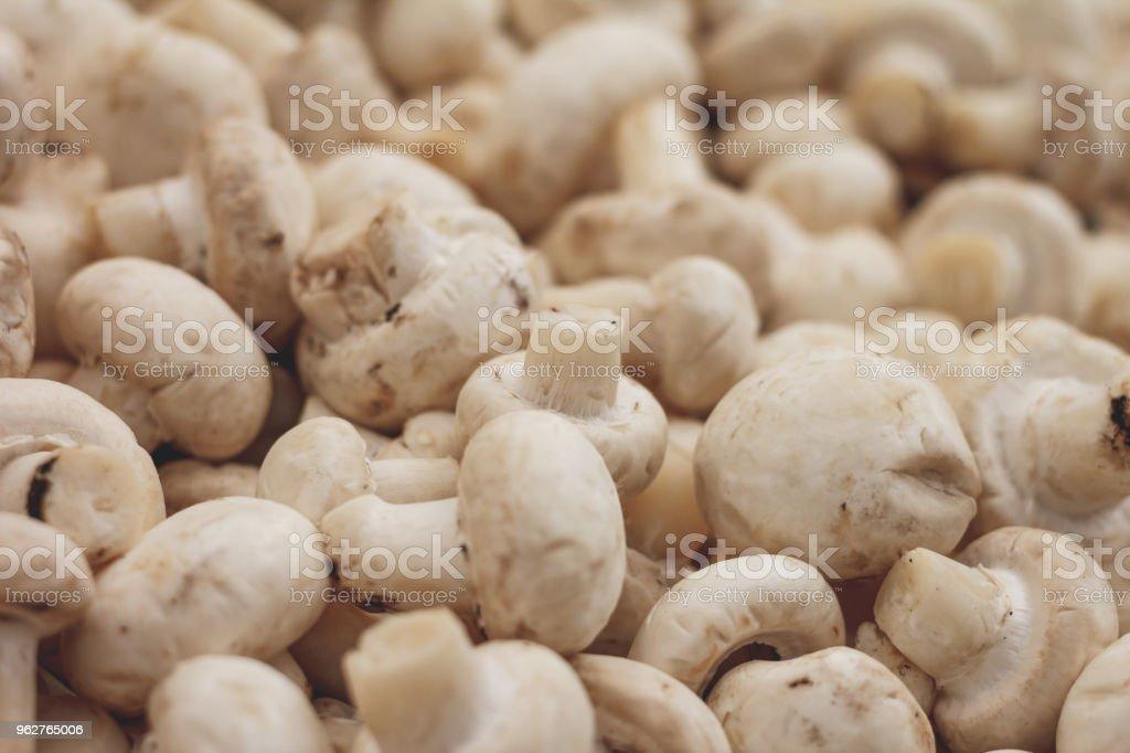 Hills of mushroom - Foto stock royalty-free di Alimentazione sana