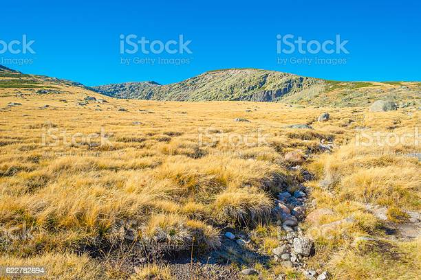 Hills of natural park sierra de gredos picture id622782694?b=1&k=6&m=622782694&s=612x612&h=pzripxal8ci0ugkkl3xsa4pjr0ih6ksw7pqsph7jcpo=