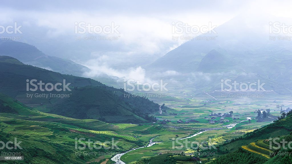 Hills of rice terraced fields royalty-free stock photo