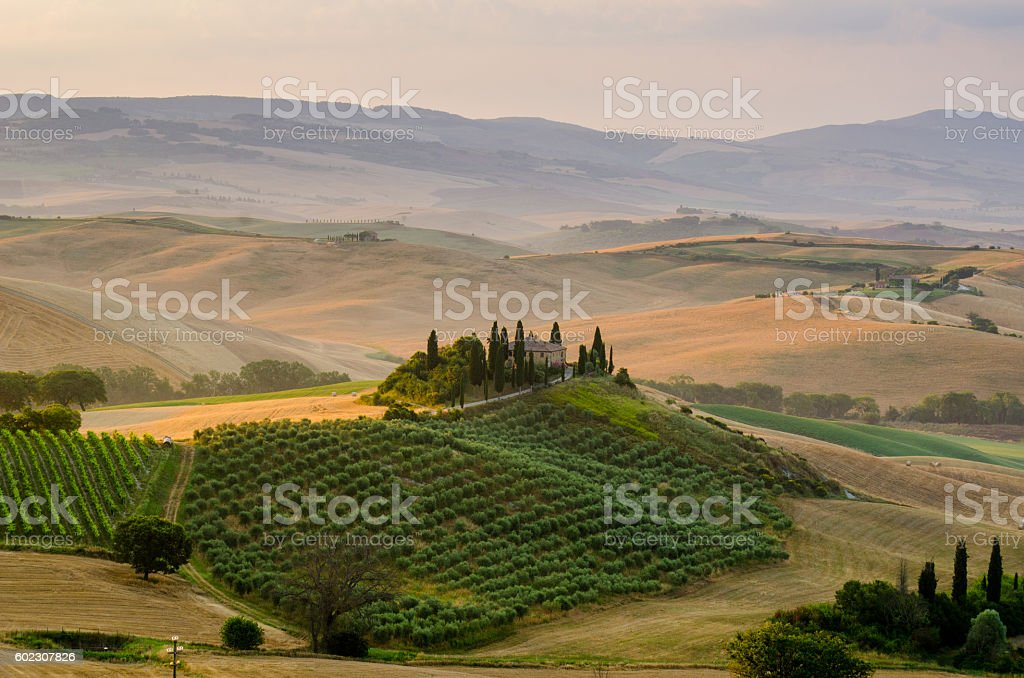 Hills of Tuscany. Italy. Sunrise stock photo
