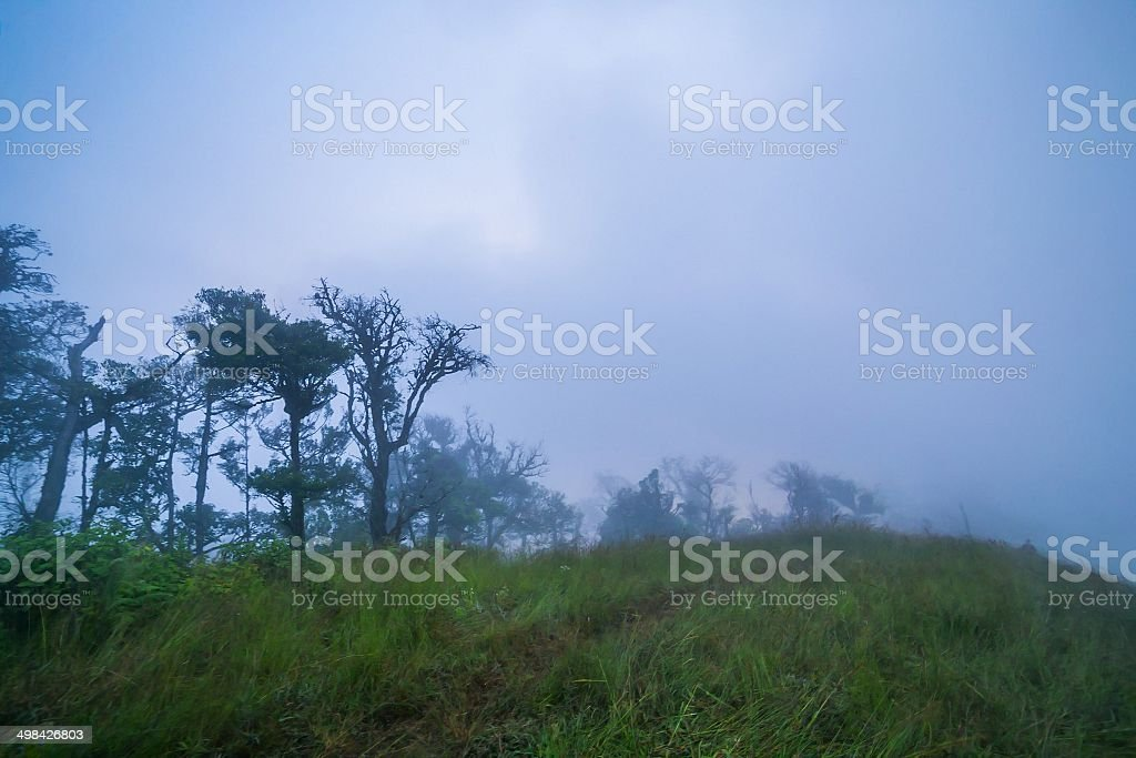 hills sunrise and mist royalty-free stock photo