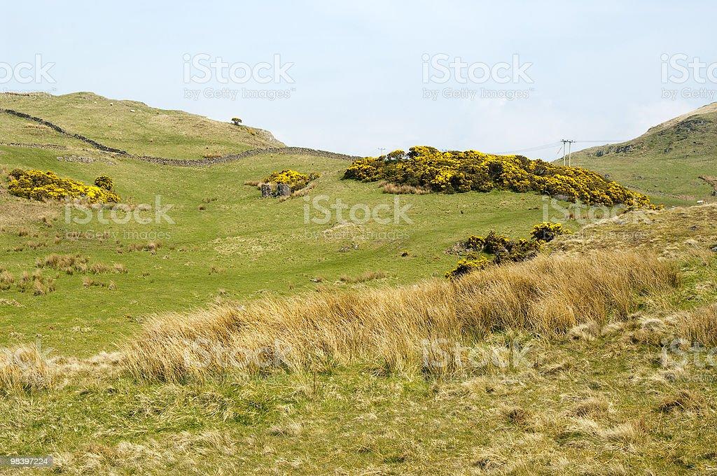 Hillside fields royalty-free stock photo