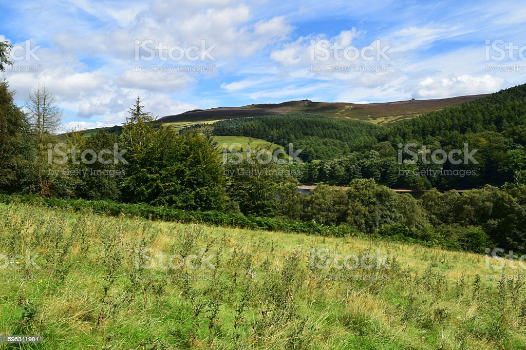 Hillside landscape royalty-free stock photo