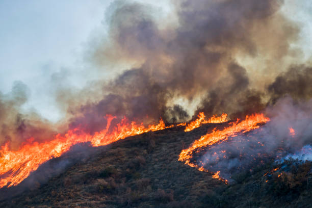 hillside on fire with bright flames and black smoke during california woolsey fire - california foto e immagini stock