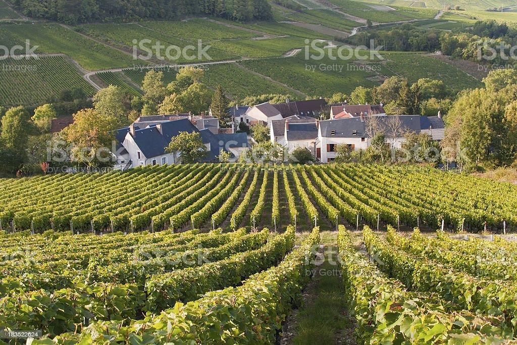 Hillside Vineyards Surround Small Village in France stock photo