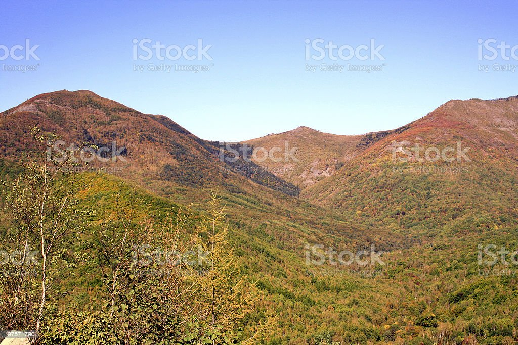 Hillsides are covered by wood royalty-free stock photo