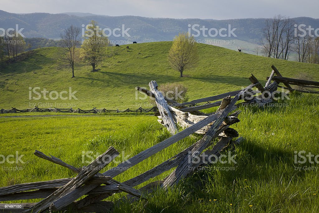 Hilltop farm and  cattle in the Virginia countryside. stock photo