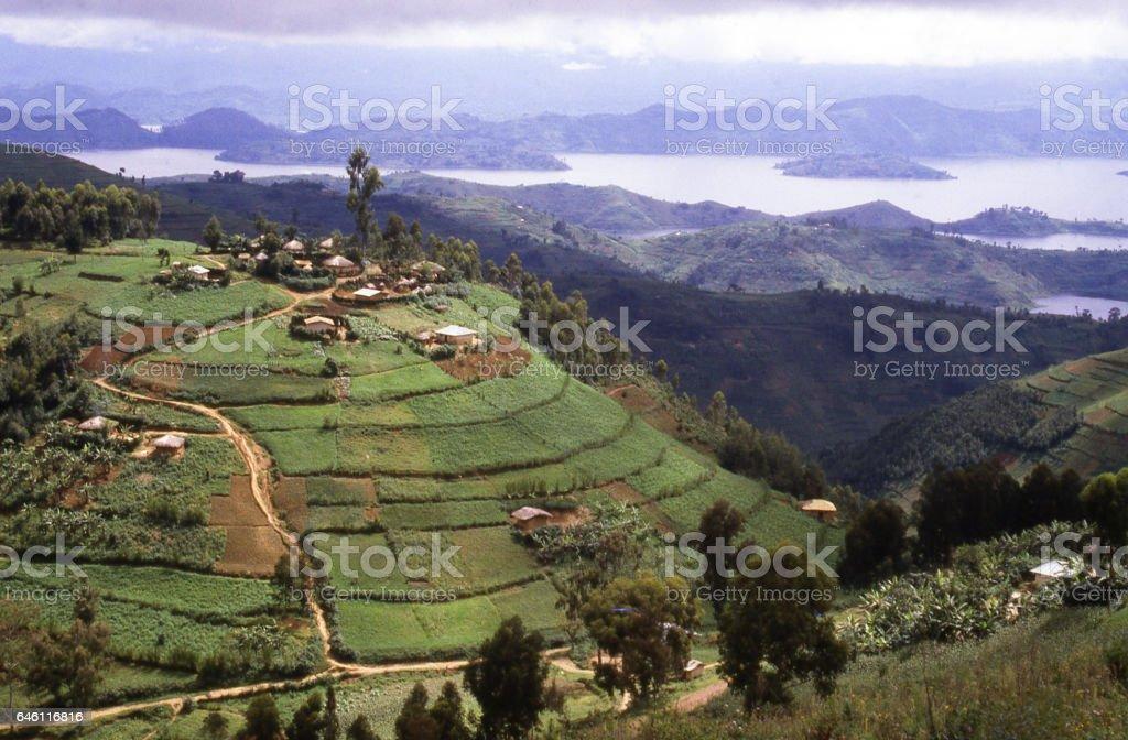 Hilltop village and terraced fields view Lake Ruhondo Rwanda Africa stock photo