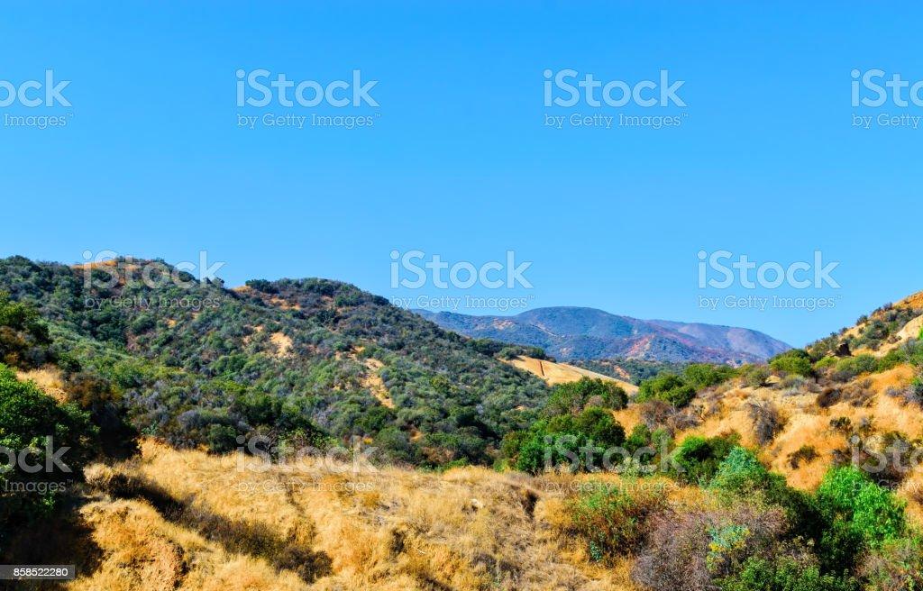 Hilltops burned in background stock photo