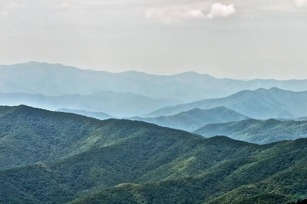 Heuveltoppen van het Great Smoky Mountain National Park foto