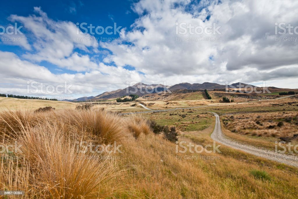hilly Grassland in Central Otago,New zealand stock photo