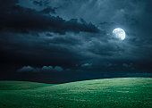 Endless hilly meadow illuminated with moonlight. Digital composition.