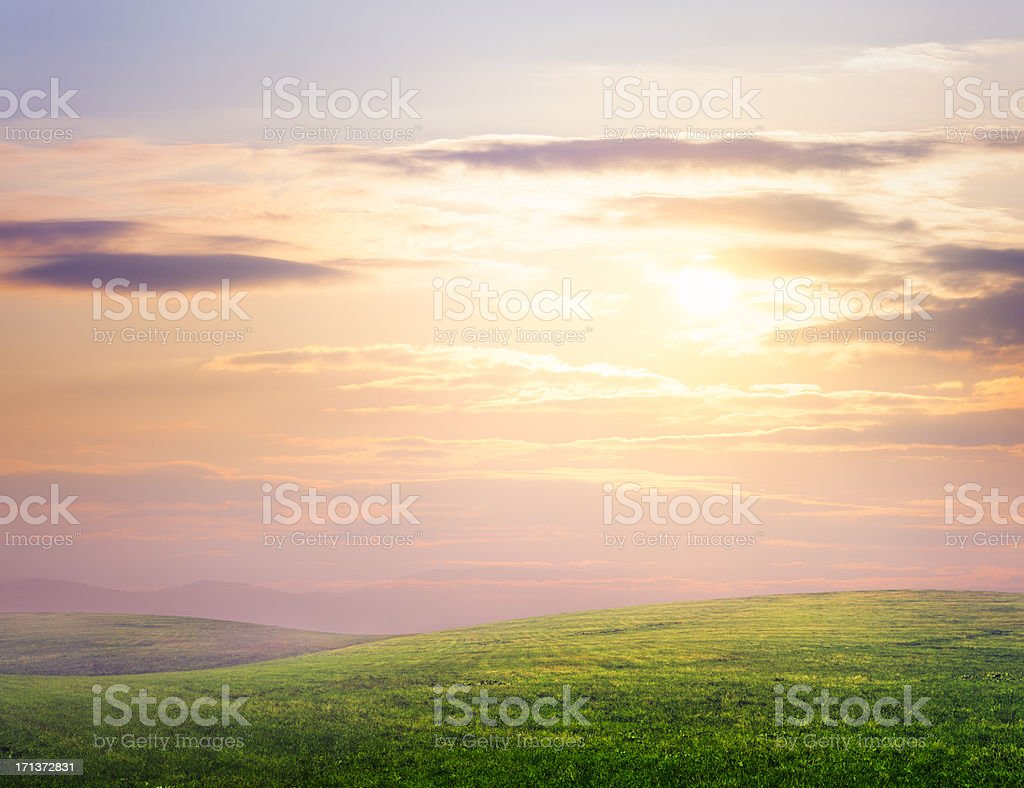 Hilly meadow stock photo