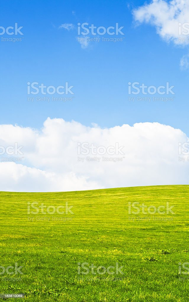 Hilly meadow - vertical image royalty-free stock photo