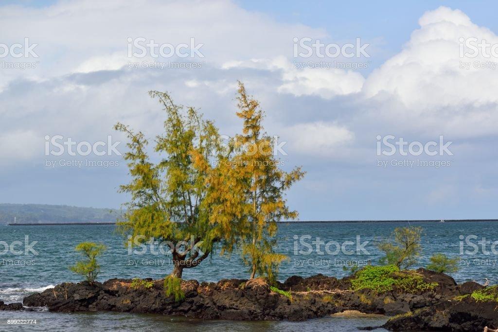 Hilo Bay at Liliuokalani Park stock photo