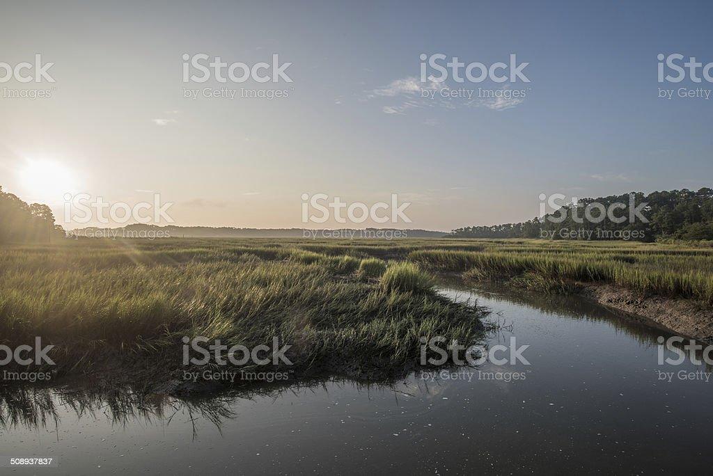 Hilton Head Tidal Marsh stock photo