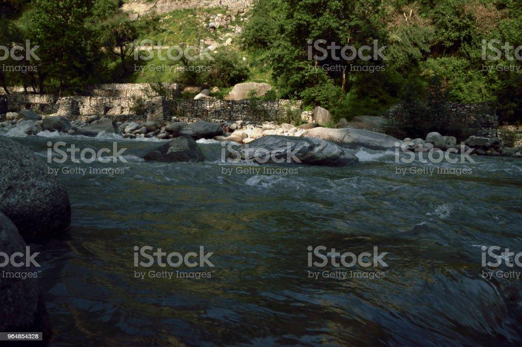 Himalayan Beauty royalty-free stock photo