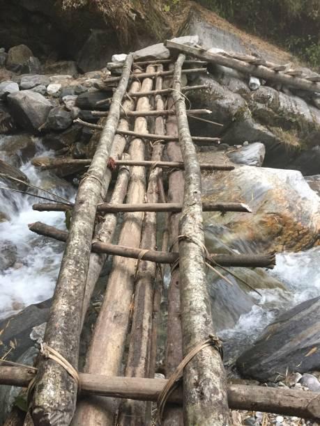 Himalayan log bridge stock photo