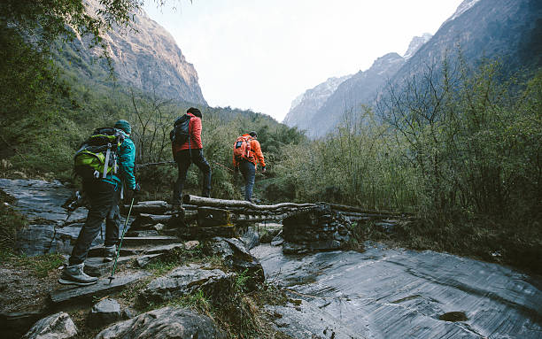 montaña del himalaya - excursionismo fotografías e imágenes de stock