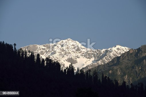 Himalaya Stock Photo & More Pictures of Forest