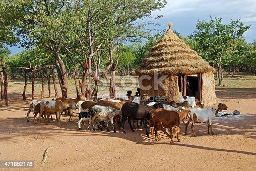 istock Himba village near the Etosha National Park in Namibia 471652178