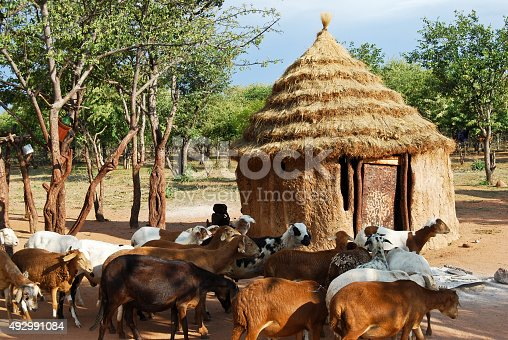 istock Himba village with traditional huts in Namibia, Africa 492991084