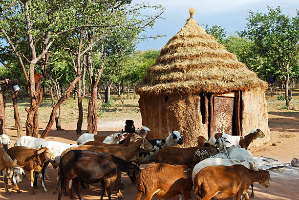 himba village with traditional huts in namibia, africa - somalia stock photos and pictures