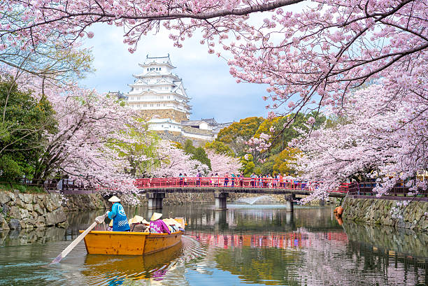 himeji castle in hyogo, japan - japanese culture stock pictures, royalty-free photos & images