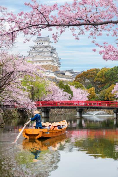 Himeji, Japan - 10. April 2017: Burg Himeji mit schönen Kirschblüten im Frühling am Hyogo in der Nähe von Osaka, Japan. Burg Himeji ist berühmte Kirschblüte Aussichtspunkt in Osaka, Japan. – Foto