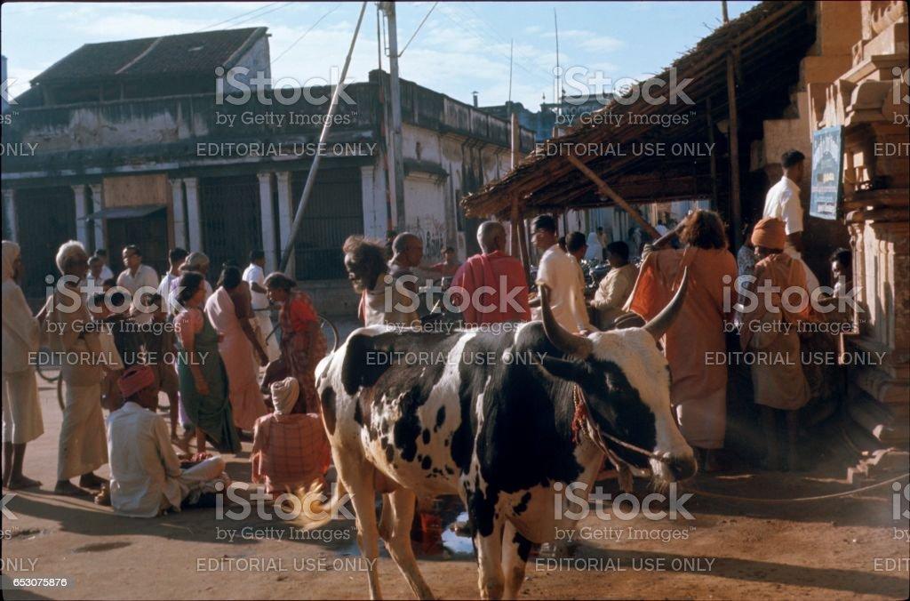 Hindu Temple, Bhopal, India stock photo