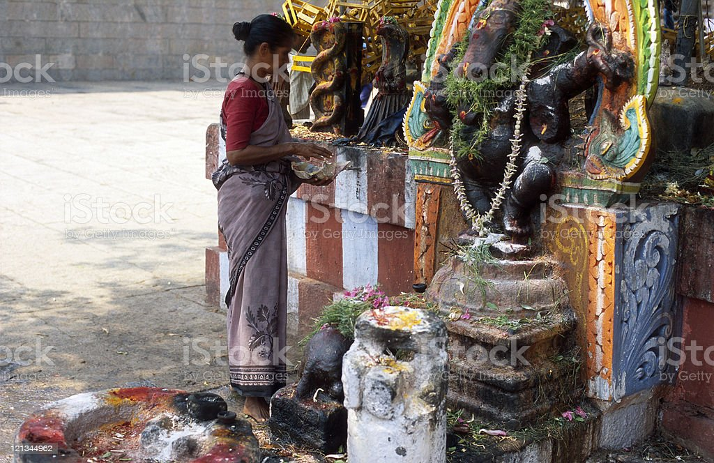 Hindu woman is praying in the temple, Madurai, India royalty-free stock photo