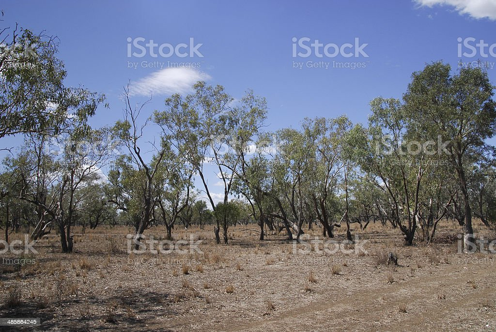 Hinterland landscape in Australia stock photo