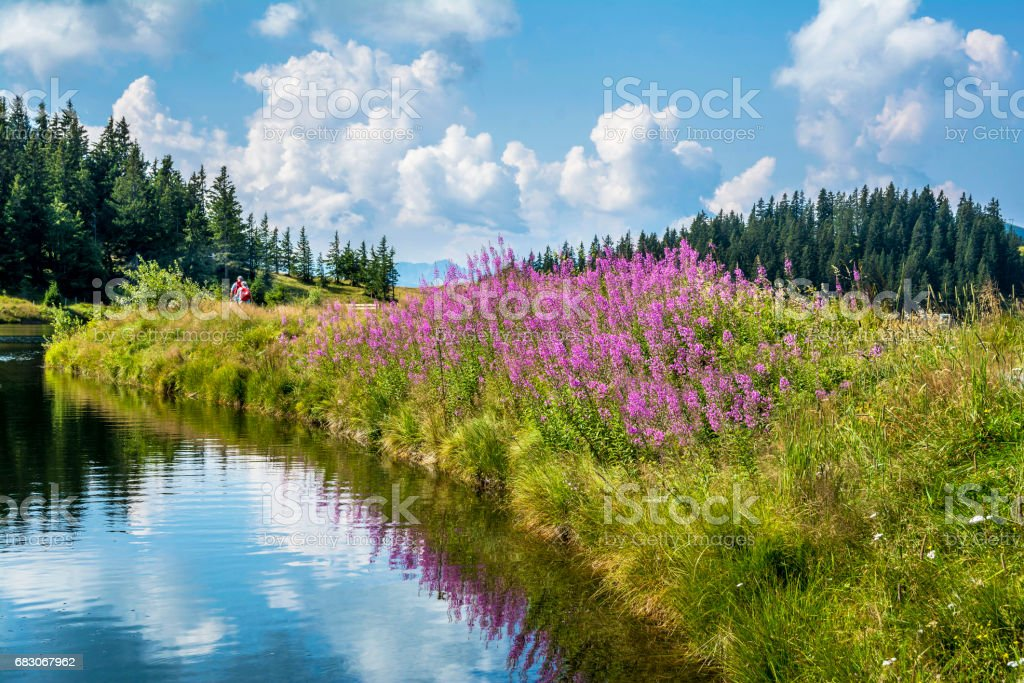 Hintersteinersee mountain lake in Tirol, Austria foto de stock royalty-free