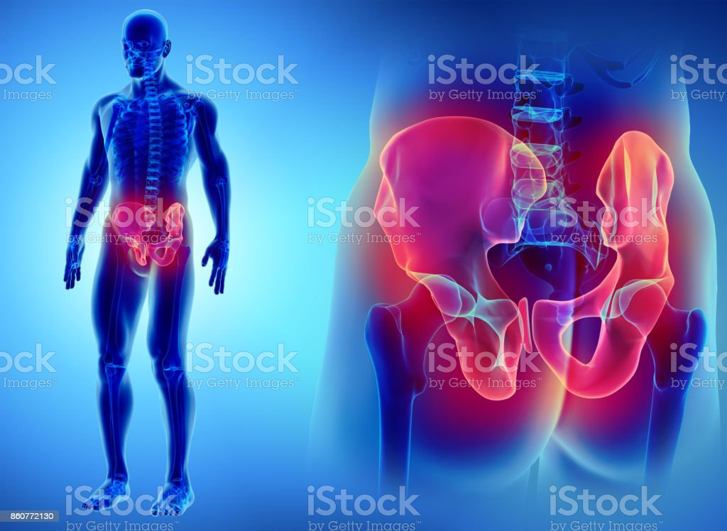 Hip Skeleton On Blue Background Stock Photo More Pictures Of