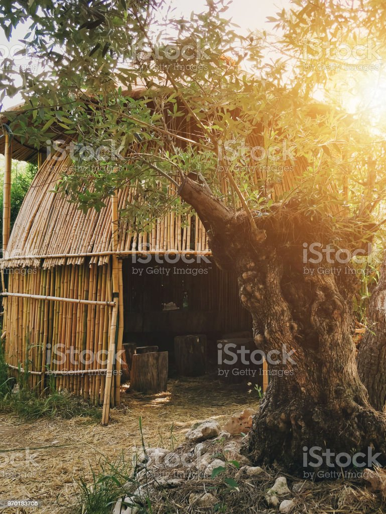 Hippiebambus Gartenhaus Haus Hutte Sommer Strand Sonne Stock