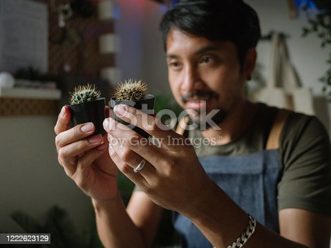 Millennial Asian Man, Passionate Houseplants Care Giver, Repotting Plants At Home.
