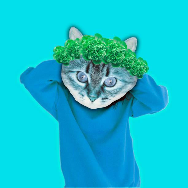 gato hipster en ropa de moda suéter con guirnalda de flores en la cabeza - cat vaporwave fotografías e imágenes de stock