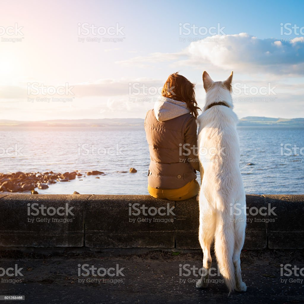 hipster girl with her pet dog at a seaside, colorised stock photo