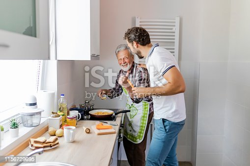 istock Hipster son with his senior father cooking 1156729695