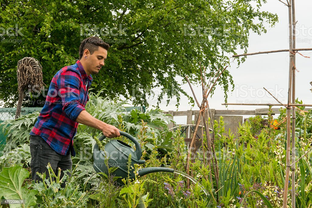 Hipster tending to his plants royalty-free stock photo