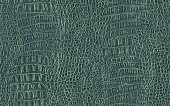 This large, High Resolution old crocodile dark Kelly Green leather Seamless texture tile, defined with exceptional detail and richness, is very handy for implementation in various 2-D and 3-D CG Projects. Thank you for checking it out!.