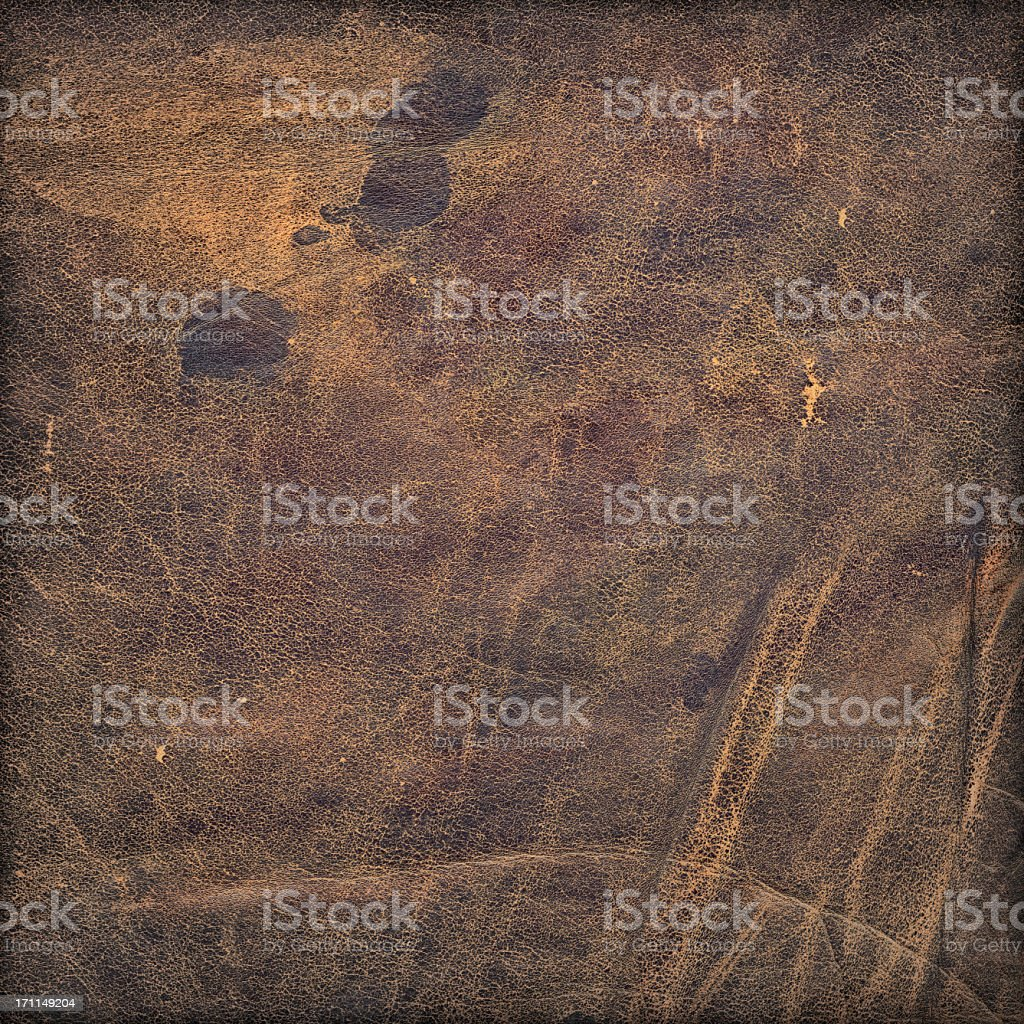 Hi-Res Animal Skin - Antique Veal Leather Grunge Texture royalty-free stock photo