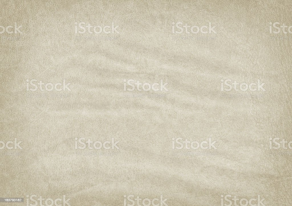 Hi-Res Animal Skin Old Parchment Wrinkled Vignetted Grunge Texture royalty-free stock photo