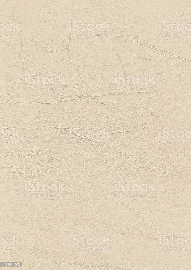 Hi-Res Antique Animal Skin Parchment Grunge Texture stock photo