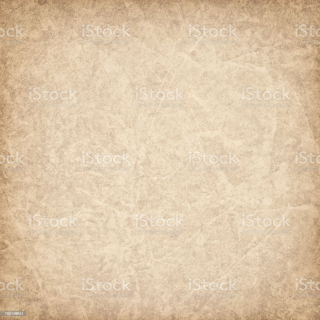 Hi-Res Antique Animal Skin Parchment Vignette Grunge Texture stock photo