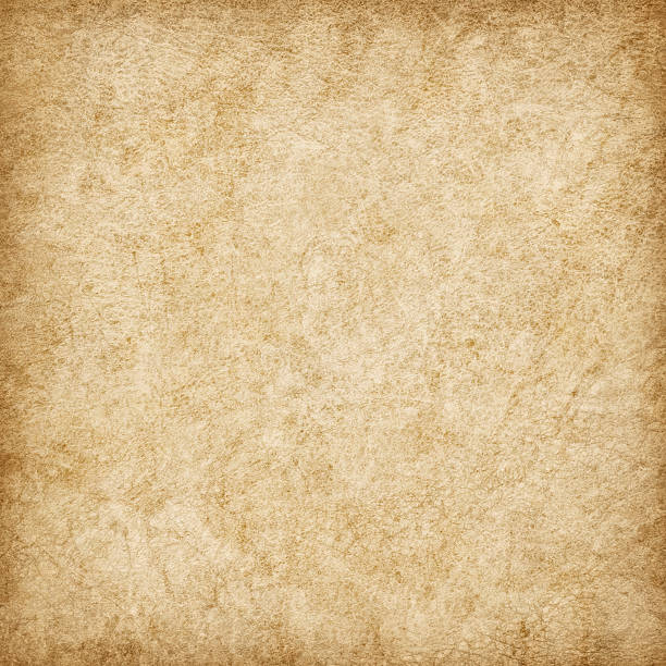 hi-res antique animal skin parchment wizened mottled vignette grunge texture - beige background stock photos and pictures